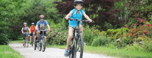 950x363_BikeFamily